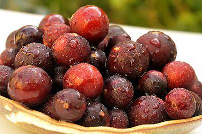 La vitamine C du camu camu renforce le système immunitaire