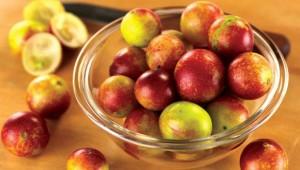 Camu camu fruit antioxydant riche en vitamine C